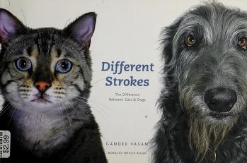Cover of: Different strokes | Gandee Vasan
