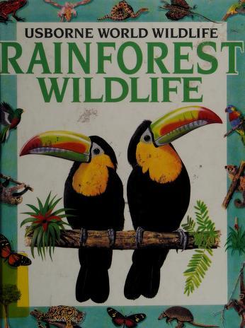 Cover of: Rainforest Wildlife (World Wildlife Series) |